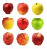 Äpfel, lokalisiert auf Weiß Lizenzfreies Stockfoto