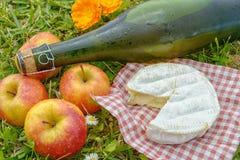 Äpfel mit Apfelwein und Camembert im Gras Lizenzfreies Stockfoto