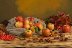 Äpfel mit Beeren auf dem Tisch Lizenzfreies Stockfoto