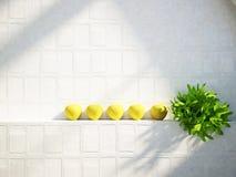 Äpfel mit den Blättern im Regal Lizenzfreies Stockfoto