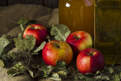 Äpfel mit einem Glas des Honigs und der Flasche Olivenöls Lizenzfreie Stockfotografie