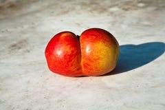 Äpfel mit interresting Deformationen geben Fantasie eine Möglichkeit Stockbild