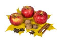 Äpfel, Nüsse und Gewürze in den Herbstahornblättern lizenzfreie stockfotografie