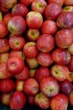 Äpfel produziert in Brasilien lizenzfreie stockbilder
