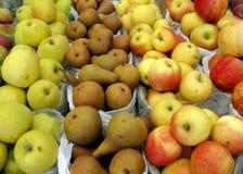 Äpfel u. Birnen Stockfoto