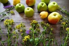 Äpfel und Birnen der frischen Frucht auf einem braunen Hintergrund Lizenzfreies Stockfoto