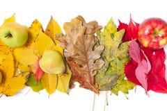 Äpfel und Birnenlüge auf gefallene Blätter Stockfotografie