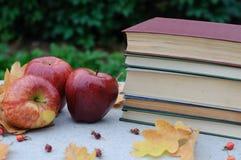 Äpfel und ein Stapel Bücher Herbst naturmort Zeit zu lesen lizenzfreie stockfotos