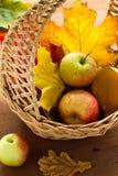 Äpfel und Herbstblätter Lizenzfreie Stockfotografie