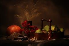 Äpfel und Kürbis Lizenzfreies Stockfoto