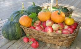 Äpfel und Kürbise Stockbild