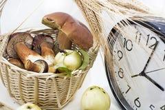 Äpfel und Pilze mit großer Uhr auf weißem Hintergrund lizenzfreie stockbilder