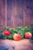 Äpfel und Tannenzweig Lizenzfreie Stockfotografie