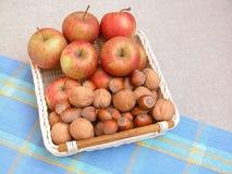 Äpfel und Walnüsse Lizenzfreies Stockfoto