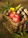 Äpfel und Walnüsse lizenzfreie stockbilder