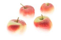 Äpfel wie im Schnee Stockfoto
