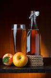 Äppelciderexponeringsglas och flaska Royaltyfri Foto
