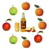 Äppelcideruppsättning royaltyfri illustrationer