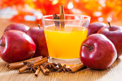 Äppelcidervinäger royaltyfri fotografi