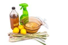 Äppelcidervinäger, citron, effektiv kryprepelle för lemongrass fotografering för bildbyråer