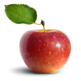 äpple Arkivbilder
