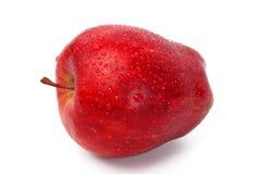 äpple Fotografering för Bildbyråer