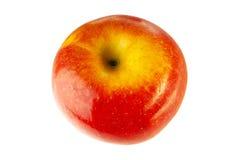 äpple Royaltyfri Bild