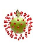 äpple Royaltyfri Fotografi