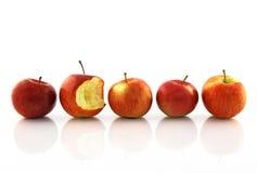 äpple biten hälft en en som är hela fotografering för bildbyråer