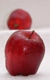 äpple - grön red Royaltyfria Bilder