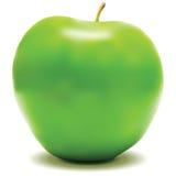 äpple - grön vektor Vektor Illustrationer