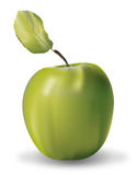 äpple - green Vektor Illustrationer