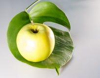 äpple - green Apple Royaltyfri Bild