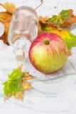 Äpple-höst skörd Arkivbild