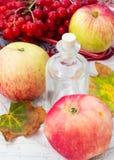 Äpple-höst skörd Arkivfoton