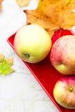 Äpple-höst skörd Royaltyfri Bild