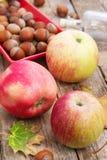 Äpple-höst skörd Arkivbilder
