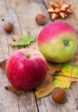 Äpple-höst skörd Royaltyfria Bilder
