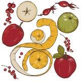 Äpple-, krydda- och bäruppsättning Fotografering för Bildbyråer