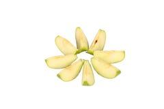 äpple - separat green Royaltyfria Foton