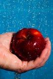 äpple som ska tvättas Arkivbild