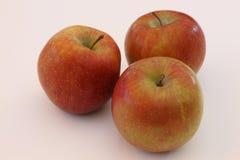 äpplebakgrundsclose upp white Arkivbild