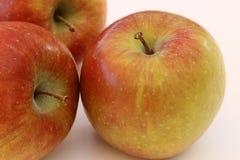 äpplebakgrundsclose upp white Royaltyfria Foton