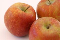 äpplebakgrundsclose upp white Arkivfoto