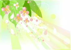 äppleblomningtree Royaltyfri Illustrationer