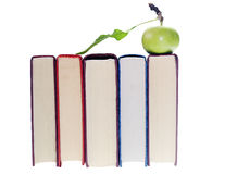 äpplebokbunt royaltyfri bild