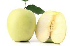 äppleclippingen innehåller digital white för bana för lutningillustrationingrepp Arkivfoto