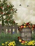 äpplefält Royaltyfria Bilder