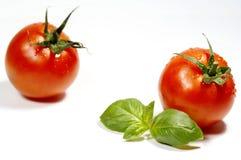 äppleförälskelse Fotografering för Bildbyråer