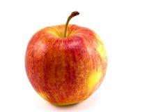 äpplegala Arkivfoton